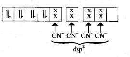 Tamil Nadu 12th Chemistry Model Question Paper 1 English Medium - 13
