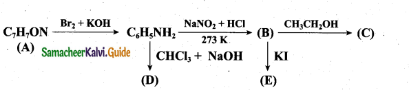 Tamil Nadu 12th Chemistry Model Question Paper 1 English Medium - 28