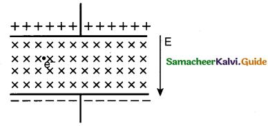 Tamil Nadu 12th Physics Model Question Paper 4 English Medium 1
