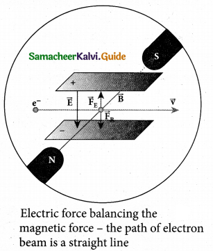 Tamil Nadu 12th Physics Model Question Paper 4 English Medium 16