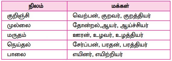 Samacheer Kalvi 10th Tamil Guide Chapter 6.6 அகப்பொருள் இலக்கணம் - 11