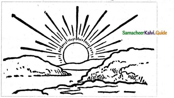 Samacheer Kalvi 6th Tamil Guide Chapter 5.5 மயங்கொலிகள் 2