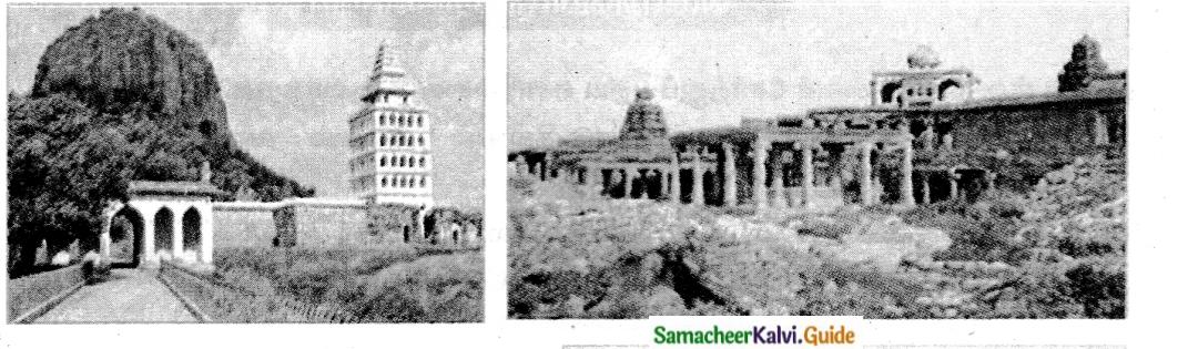 Samacheer Kalvi 6th Tamil Guide Chapter 5.5 மயங்கொலிகள் 3