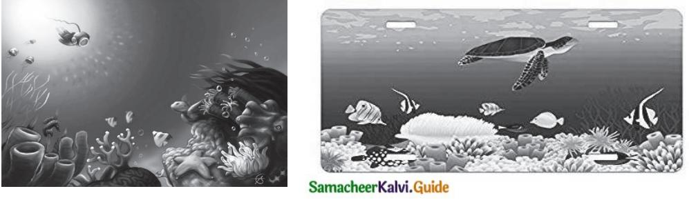 Samacheer Kalvi 7th Tamil Guide Chapter 4.4 ஆழ்கடலின் அடியில் 1