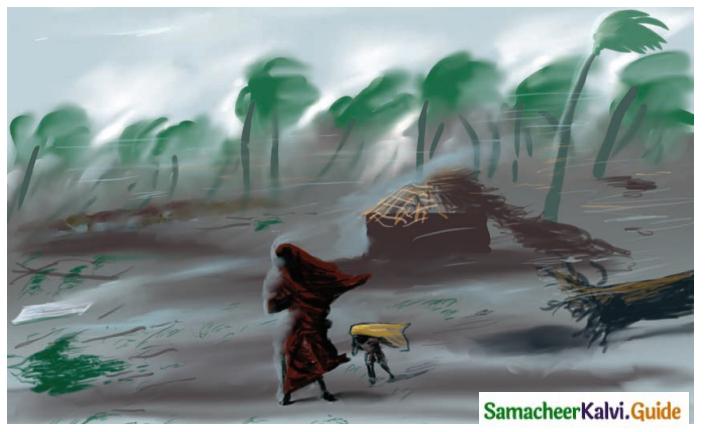 Samacheer Kalvi 8th Tamil Guide Chapter 2.2 கோணக்காத்துப் பாட்டு 1