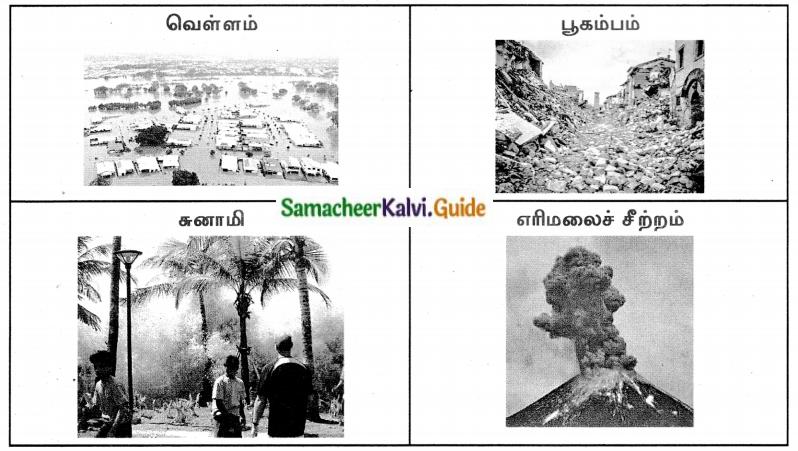 Samacheer Kalvi 8th Tamil Guide Chapter 2.2 கோணக்காத்துப் பாட்டு 2