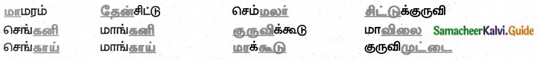 Samacheer Kalvi 8th Tamil Guide Chapter 4.5 வேற்றுமை 3