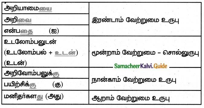 Samacheer Kalvi 8th Tamil Guide Chapter 4.5 வேற்றுமை 7