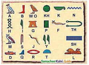Samacheer Kalvi 9th Social Science Guide History Chapter 2 Ancient Civilisations