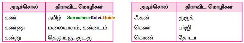 Samacheer Kalvi 9th Tamil Guide Chapter 1.1 திராவிட மொழிக்குடும்பம் - 2