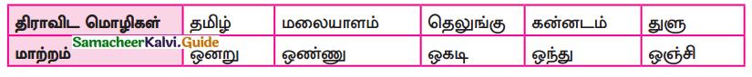 Samacheer Kalvi 9th Tamil Guide Chapter 1.1 திராவிட மொழிக்குடும்பம் - 3