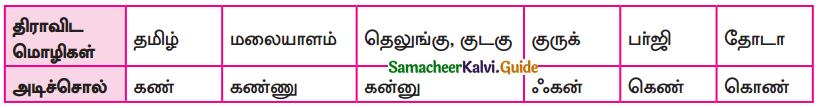 Samacheer Kalvi 9th Tamil Guide Chapter 1.1 திராவிட மொழிக்குடும்பம் - 4