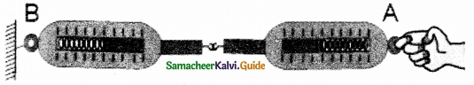 Samacheer Kalvi 10th Science Guide Chapter 1 Laws of Motion 13