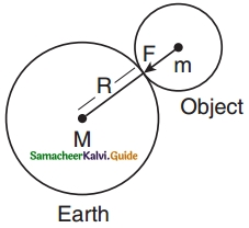 Samacheer Kalvi 10th Science Guide Chapter 1 Laws of Motion 22
