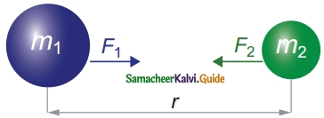 Samacheer Kalvi 10th Science Guide Chapter 1 Laws of Motion 4