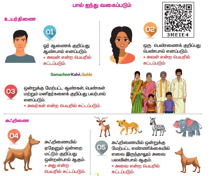 Samacheer Kalvi 4th Tamil Guide Chapter 2 பனைமரச் சிறப்பு - 10