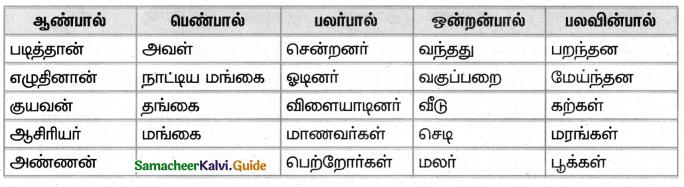 Samacheer Kalvi 4th Tamil Guide Chapter 2 பனைமரச் சிறப்பு - 5