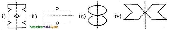Samacheer Kalvi 6th Maths Guide Term 3 Chapter 4 Symmetry Ex 4.1 8