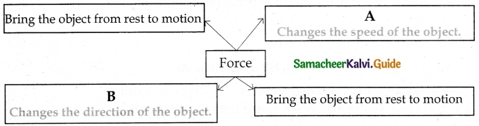 Samacheer Kalvi 6th Science Guide Term 1 Chapter 2 Force and Motion 8