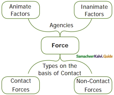 Samacheer Kalvi 6th Science Guide Term 1 Chapter 2 Force and Motion 9