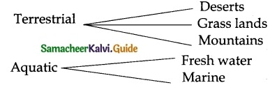 Samacheer Kalvi 6th Science Guide Term 1 Chapter 4 The Living World of Plants 2