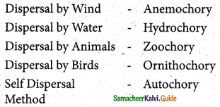 Samacheer Kalvi 5th Science Guide Term 2 Chapter 3 Plants 7