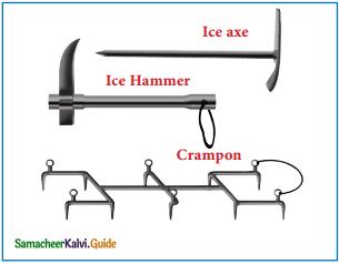 Samacheer Kalvi 12th English Guide Prose Chapter 4 The Summit 11