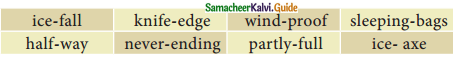 Samacheer Kalvi 12th English Guide Prose Chapter 4 The Summit 5