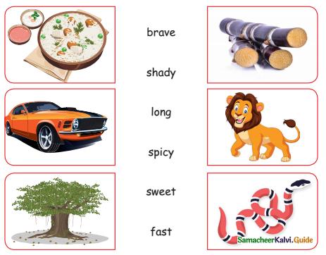 Samacheer Kalvi 4th English Guide Term 2 poem 3 The painter 1