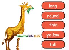 Samacheer Kalvi 4th English Guide Term 2 poem 3 The painter 2