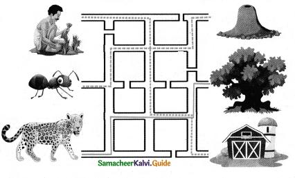 Samacheer Kalvi 4th English Guide Term 2 poem Chapter 2 what do human save 2