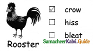 Samacheer Kalvi 4th English Guide Term 3 Supplementary 1 The mistaken plate 11