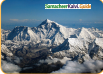 Samacheer Kalvi 4th English Guide Term 3 Supplementary 1 The mistaken plate 12