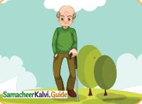 Samacheer Kalvi 4th English Guide Term 3 Supplementary 1 The mistaken plate 14