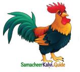 Samacheer Kalvi 4th English Guide Term 3 Supplementary 3 The Magic pencil 3