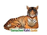Samacheer Kalvi 4th English Guide Term 3 Supplementary 3 The Magic pencil 8