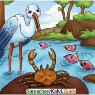 Samacheer Kalvi 4th English Guide Term 3 Supplementary 3 The Magic pencil 9