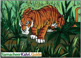 Samacheer Kalvi 6th English Guide Term 3 Play Chapter 1 The Jungle Book 4