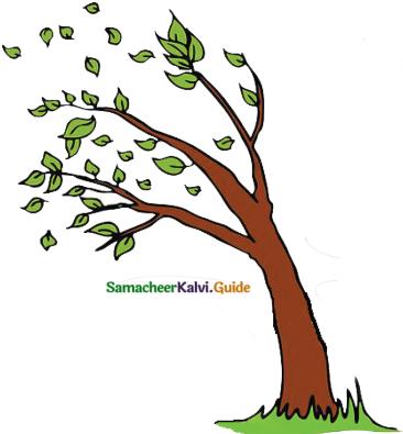 Samacheer Kalvi 6th English Guide Term 3 Poem 1 Indian Seasons 3