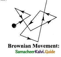 Samacheer Kalvi 9th Science Guide Chapter 10 Matter Around Us 1