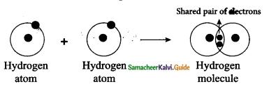 Samacheer Kalvi 9th Science Guide Chapter 13 Chemical Bonding 18