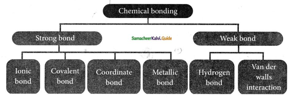 Samacheer Kalvi 9th Science Guide Chapter 13 Chemical Bonding 3