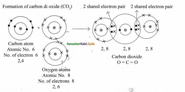 Samacheer Kalvi 9th Science Guide Chapter 13 Chemical Bonding 6
