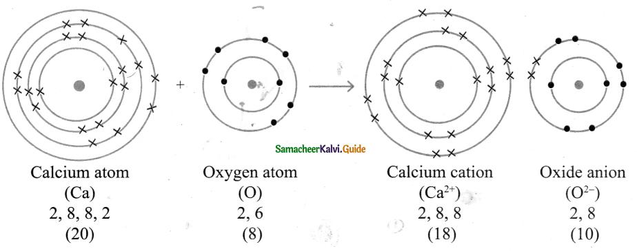 Samacheer Kalvi 9th Science Guide Chapter 13 Chemical Bonding 9