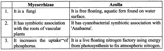 Samacheer Kalvi 9th Science Guide Chapter 23 Economic Biology-3