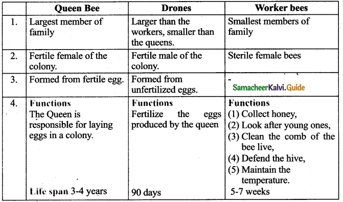 Samacheer Kalvi 9th Science Guide Chapter 23 Economic Biology-4