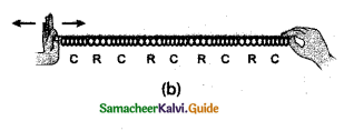 Samacheer Kalvi 9th Science Guide Chapter 8 Sound 3