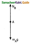Samacheer Kalvi 11th Physics Guide Chapter 3 Laws of Motion 35