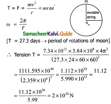 Samacheer Kalvi 11th Physics Guide Chapter 3 Laws of Motion 47