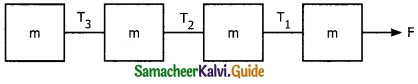 Samacheer Kalvi 11th Physics Guide Chapter 3 Laws of Motion 54